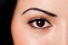 Wenkbrauw en oog Stock Foto