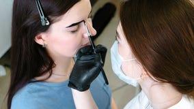 Wenkbrauwcorrectie Cosmetologist zet verf op de cliënt` s wenkbrauwen met borstel stock video