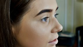 Wenkbrauwenzorg Close-up van Vrouwen Mooi Blauw Oog, Perfecte Gevormde Brow, Lange Wimpers met Professionele Make-up en Stock Foto