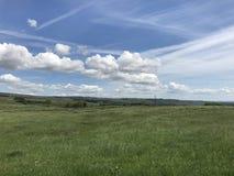 Wensleydale Йоркшир Стоковое Изображение