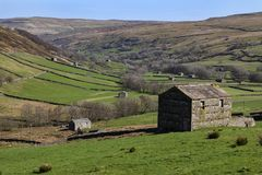 Wensleydale in the Yorkshire Dales National Park - England Stock Image