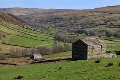Wenslydale in het de Dallen Nationale Park van Yorkshire - Engeland stock afbeelding