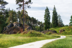 Wental, Felsenmeer w Szwabskiej albie, Baden-WÃ ¼ rttemberg, Niemcy Obraz Royalty Free