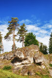Wental, Felsenmeer w Szwabskiej albie, Baden-WÃ ¼ rttemberg, Niemcy Zdjęcia Stock