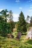 Wental, Felsenmeer w Szwabskiej albie, Baden-WÃ ¼ rttemberg, Niemcy Fotografia Stock