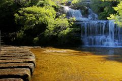 Wentworh Fall at Blue Mountains Royalty Free Stock Photography