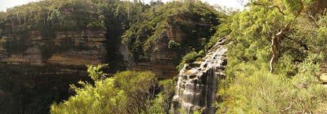Wentworth cai, o parque nacional das montanhas azuis, NSW, Austrália Foto de Stock
