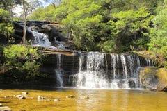Wentworth cai, o parque nacional das montanhas azuis, NSW, Austrália Imagens de Stock