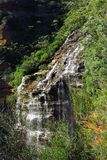 Wentworth falls, Blue Mountains National Park, NSW, Australia Royalty Free Stock Image