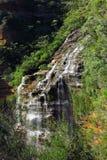 Wentworth falls, Blue Mountains National Park, NSW, Australia Royalty Free Stock Image