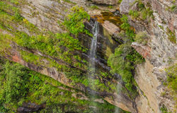Wentworth falls,Blue mountains Royalty Free Stock Images