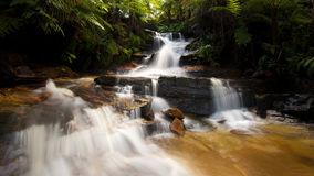 Wentworth Falls - Katoomba, blåa berg Arkivbild