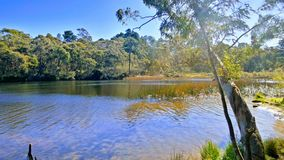Wentworth Falls Lake Photographie stock