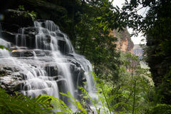 Wentworth Falls Royalty Free Stock Image