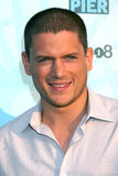 Wentworth Miller Stock Photography