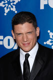 Wentworth Miller Stock Images