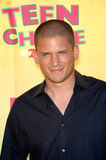 Wentworth Miller Royalty Free Stock Photo
