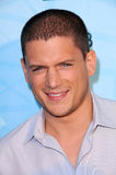 Wentworth Miller Royalty Free Stock Image
