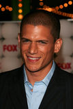 Wentworth Miller Stock Photos
