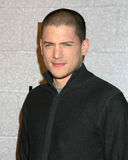 Wentworth Miller Royalty Free Stock Photos