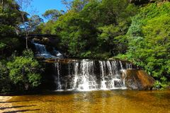 Wentworth nedgångar, blå bergnationalpark, NSW, Australien Royaltyfri Fotografi