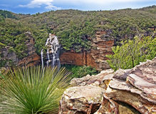 Wentworthfalls, Blue Mountains Royalty Free Stock Photos