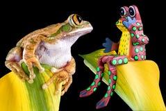Wer ist der reale Frosch? Stockbild
