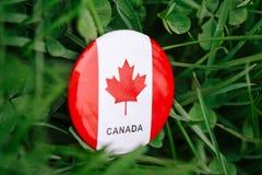 werden Sie mit dem roten weißen kanadischen Flaggenahornblatt deutlich, das draußen im Gras auf grünem Waldnaturhintergrund, Kana Lizenzfreie Stockfotos