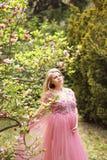 Werdende Mutter im leicht rosa Negligé steht nahe der Magnolie, die mit rosa Blumen blüht Stockfotos