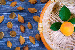 Were delicious apricots. Lonely apricot in the basket Royalty Free Stock Image