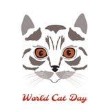 Wereld Cat Day katten hoofdclose-up Stock Afbeelding