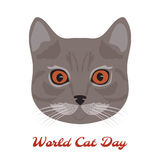 Wereld Cat Day katten hoofdclose-up Royalty-vrije Stock Foto