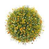 Wereld met bloemen, groene wereld wordt gemaakt die vector illustratie