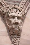 werewolf Royaltyfri Foto