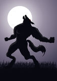 Werewolf. Illustration of a werewolf at a full moon Royalty Free Stock Images
