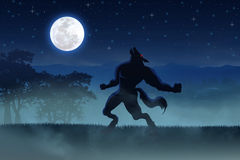 Werewolf. Illustration of a werewolf during the full moon Royalty Free Stock Photo