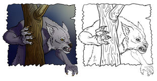werewolf Fotografie Stock Libere da Diritti