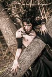 Werewolf boy. Man-tree in a wild wood. Art project. Fantasy. Halloween Stock Photography