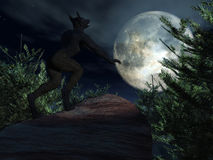 Werewolf howling at moon Stock Photo