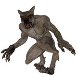 Werewolf Hunting. A large powerful werewolf hunting Stock Photos