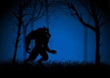 Werewolf. A Werewolf lurking in the woods Stock Images