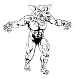 Werewolf mascot. A black and white wolf man, werewolf or wolf sports mascot character with claws out Stock Photography