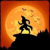 Werewolf on orange background Stock Photography