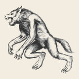 Werewolf Sketch Stock Photography