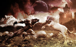 Werewolf And Unicorn. Extremely detailed good and bad illustration. Battle of darkness and light Stock Photo