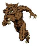 Werewolf or wolf mascot running Stock Photo