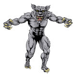 Werewolf wolf scary sports mascot Stock Image