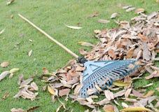 Werf het werken en het tuinieren hulpmiddelen op groen gras Royalty-vrije Stock Afbeeldingen