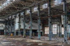 Werfen Sie die alte Anlage Stockfotografie