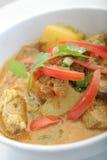 Werfen Sie Fleischcurry-Asien-Nahrung lizenzfreies stockfoto